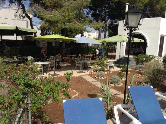 Casa Ceiba Maria: coin Piscine et terrasse du PDJ