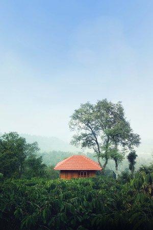 Marmalade Springs: Tree House