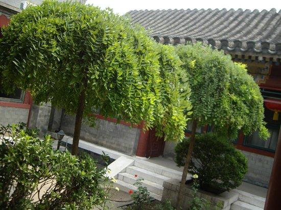 Lusongyuan Hotel: Hutong courtyard