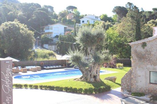 Hotel Can Galvany: Luz