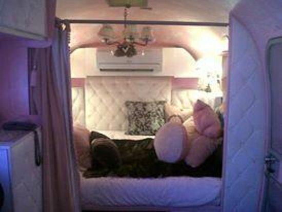 Grand Daddy Hotel: Love Caravan