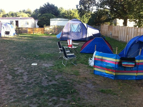 Oakdene Forest Park: Tent pitches 11&10