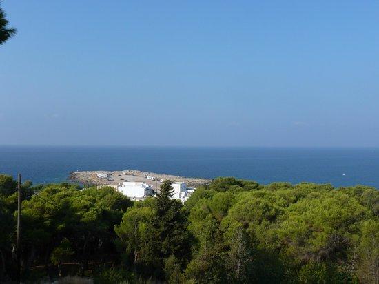 Cala D'Aspide Resort: Punta d'Aspide dalla terrazza, l'ultimo tuffo della giornata