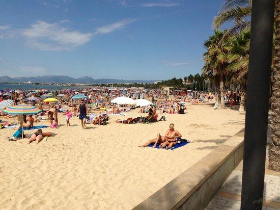 Apartments California: Beach