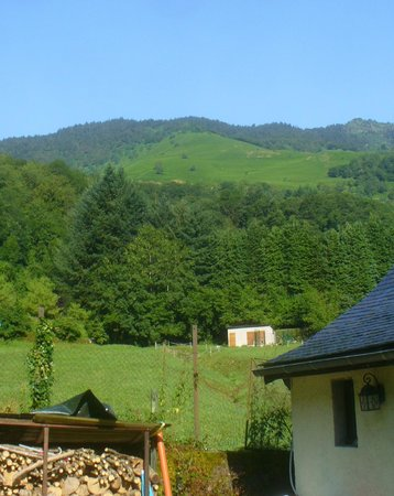 Maison Bergoun: view from the yard