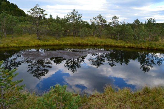 Mohos Peat-Bog: One of the lakes