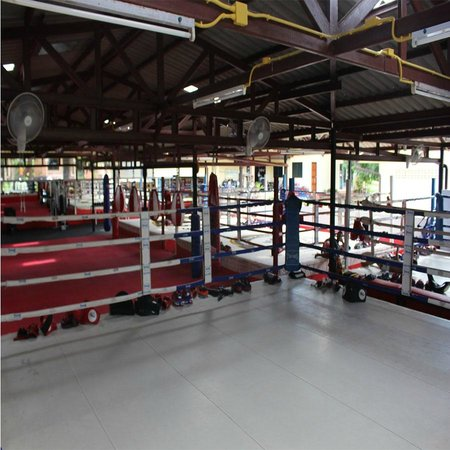 Kingka Muay Thai: Supa muay Thai has 4 Rings and a minimum of 14 trainers