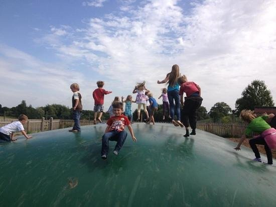 Cattle Country Adventure Park: great bounce fun!