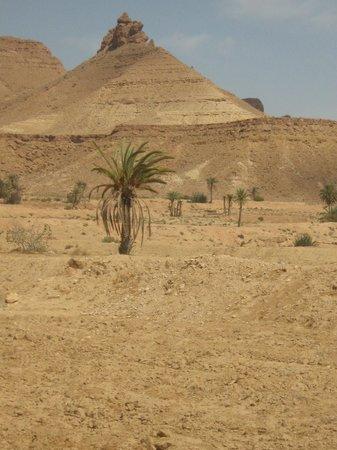 Dar Nesma : sur la route du desert