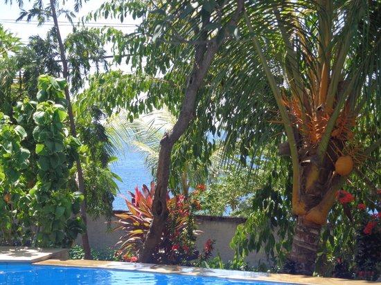 Anugerah Villas: piscine