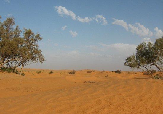 Dar Nesma : desert sahara