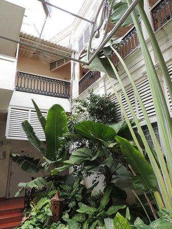 Taj Mahal Hotel, Abids: passage plants