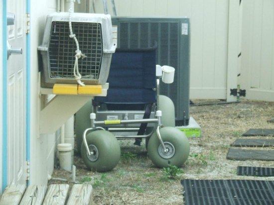 Nokomis Beach: Handicaped