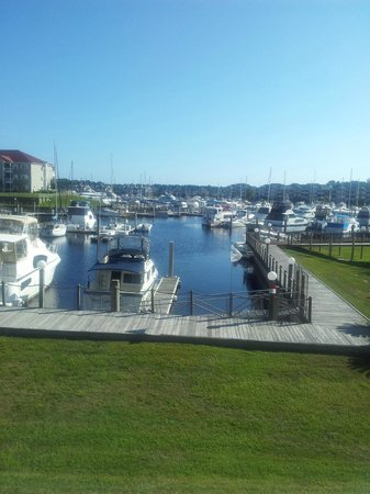 Holiday Inn Express N. Myrtle Beach-Little River: Beautiful Hotel Surroundings