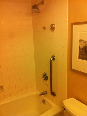 San Francisco Airport Marriott Waterfront: Bathroom