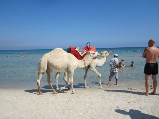 Le Soleil Bella Vista Hotel : Пляж