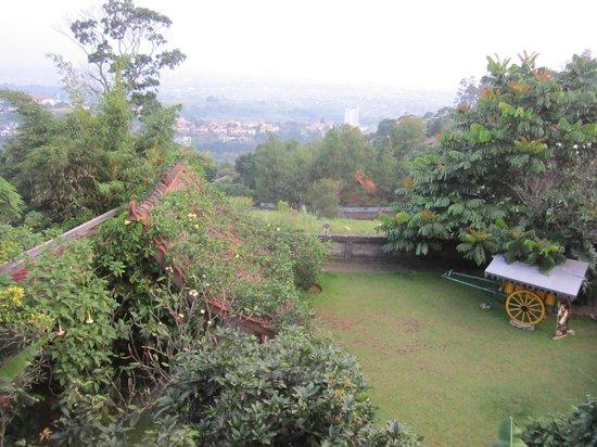 Cottonwood Bed & Breakfast: Beautiful small garden