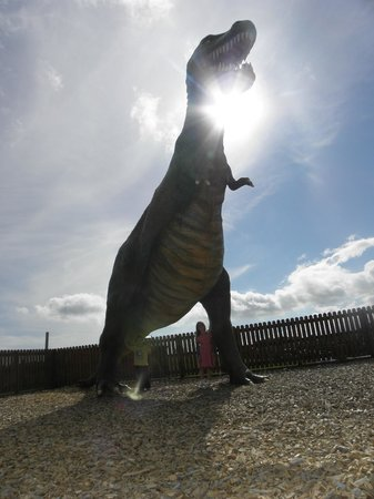 The CocoaBean Company: One of the dinosaurs in the play park