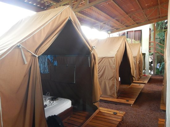 Arenal Backpackers Resort: Tent area