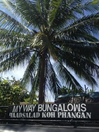 My Way Bungalows : taxi