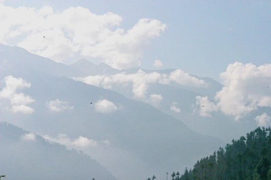 The Manali Lodge: View from rooftop