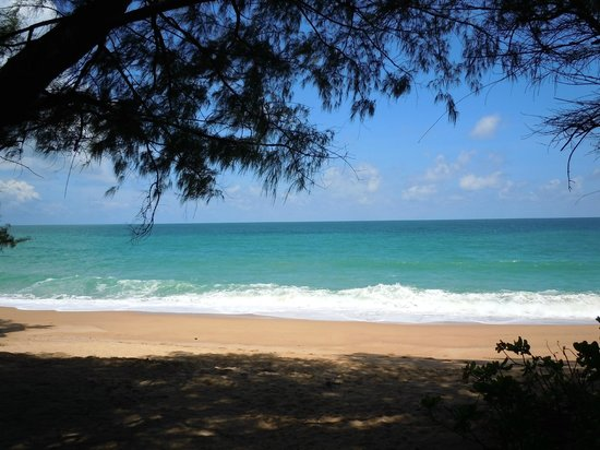 Renaissance Phuket Resort & Spa: Beautiful long clean beach - long walks without the crowds