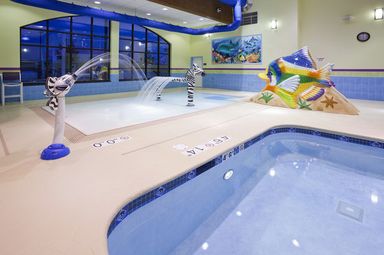 Holiday Inn Express & Suites Rogers: Pool Oasis