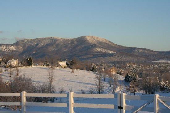 Landrum, Carolina del Sur: Cottages in snow
