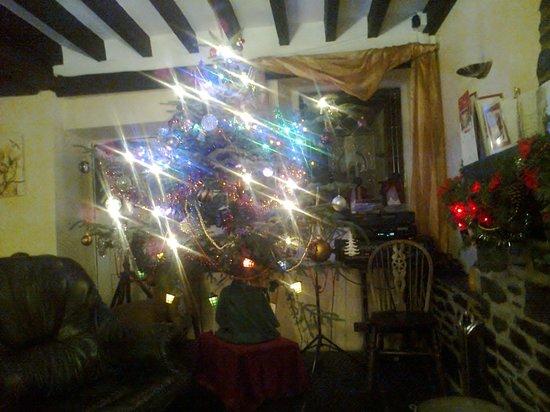 Pen-y-Bont Hotel: Christmas Tree 2012 in the Fireside Restaurant.