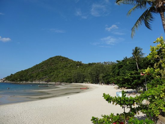 Starlight Resort: Der Strand bei Ebbe