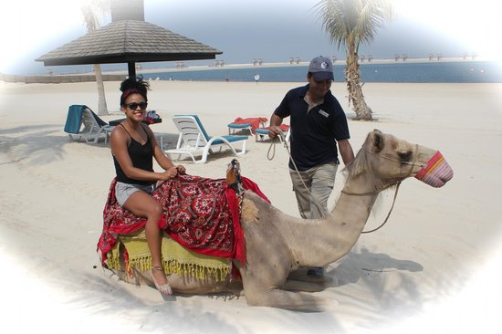 Ja Beach Hotel My Niece Having Her Camel Ride On The Lovely Jebel