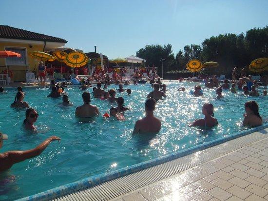 Piscine picture of le palme camping pacengo tripadvisor for Camping le piscine sarteano