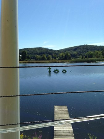 The Marina: View from the Deck