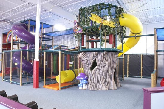 Zoom Zoom's Indoor Playground: Treehouse - 1