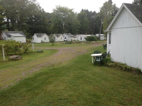 Cozy Cottages & Otter Valley Winery : view from cottage 21