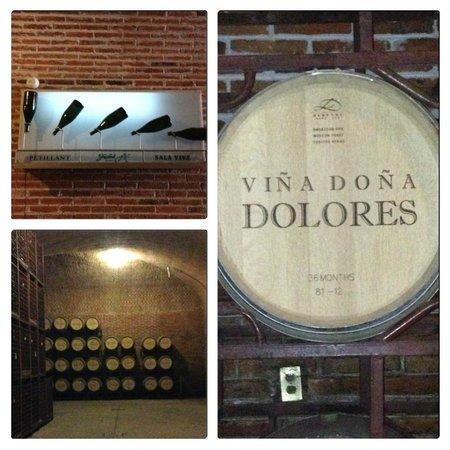 Finca Sala Vive by Freixenet Mexico: Proceso de elaboración vinos, Cavas Freixenet