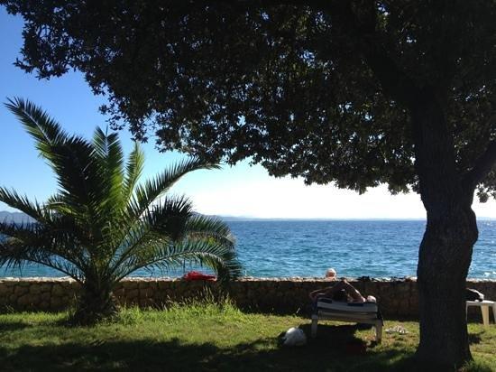 Villa Nela : View from the garden.