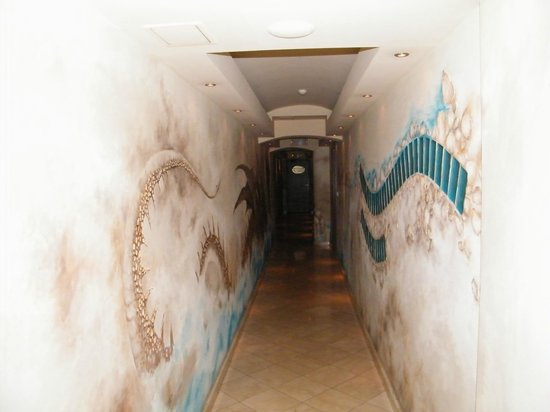 Wawel Hotel : ingresso della spa
