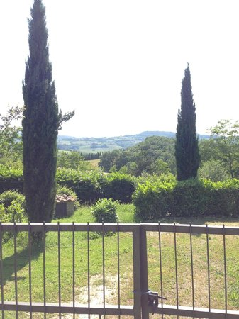 Tuscan Cooking Class: Take a walk around the grounds after the class for more awesome Tuscan views!