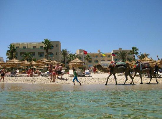 Palmyra Beach : вид с моря
