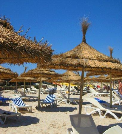 Palmyra Beach : много-много зонтиков