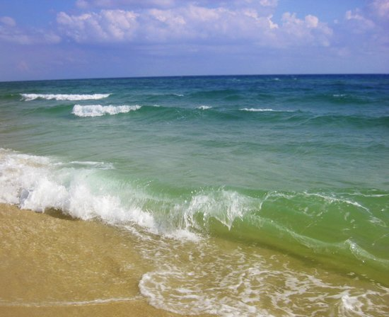 Palmyra Beach : море)