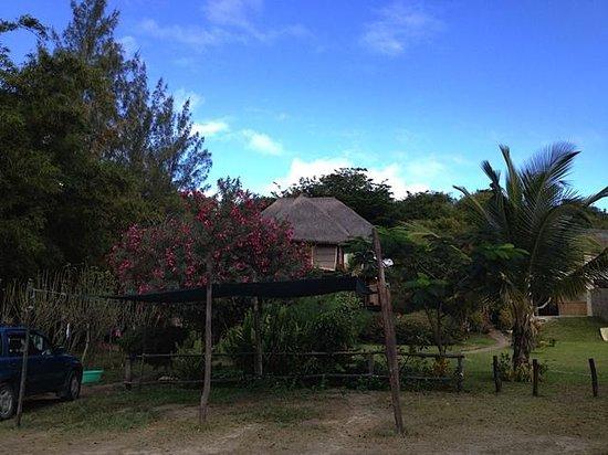 Casa Cabana Beach: casa cabana guesthouses