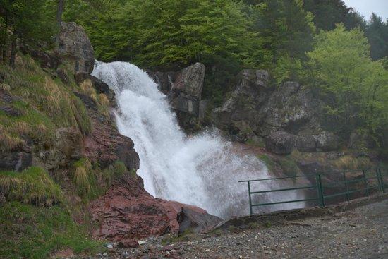 Parador de Bielsa: Cascada