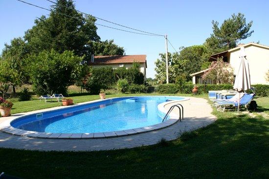 Agriturismo Il Capannone: piscina