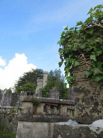 Drum Manor Forest Park: Castle Ruins
