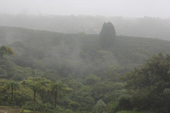 Hotel Mango Valley: Panorama