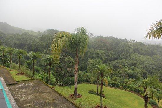 Hotel Mango Valley: Il giardino