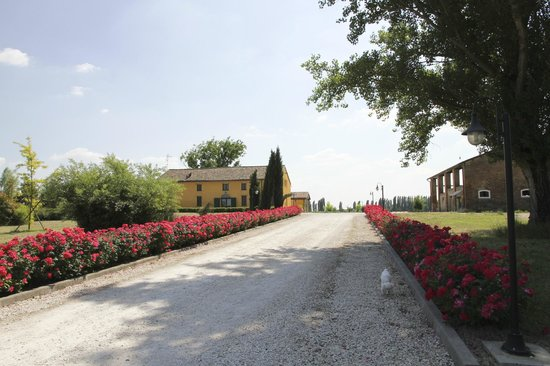 Chiesuol del Fosso, Italy: Agriturismo