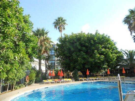 Hotel Boccaccio: 9am at the pool